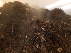 Biogene Abfälle, © Jan Sprafke