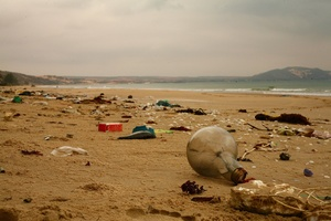 Beach with waste